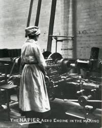 Image of woman worker