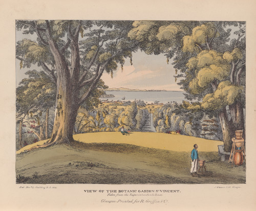 View of the Botanic Gardens St. Vincent, 1825.