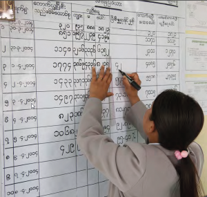 Myanmar observer mission report